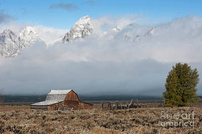 Photograph - Exposure - Grand Teton National Park by Sandra Bronstein