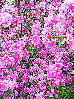 Photograph - Expressionalism Apple Blossoms by Aimee L Maher Photography and Art Visit ALMGallerydotcom