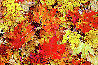 Photograph - Expressionalism Autumn Leaves by Aimee L Maher Photography and Art Visit ALMGallerydotcom