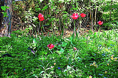 Photograph - Expressionalism Backyard Tulips by Aimee L Maher Photography and Art Visit ALMGallerydotcom
