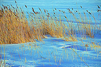 Photograph - Expressionalism Blowing In The Wind by Aimee L Maher Photography and Art Visit ALMGallerydotcom