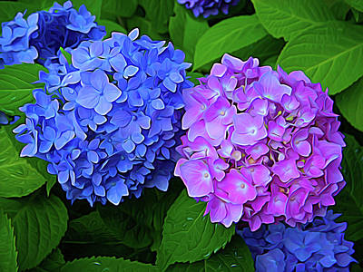 Photograph - Expressionalism Blue And Lavender by Aimee L Maher Photography and Art Visit ALMGallerydotcom