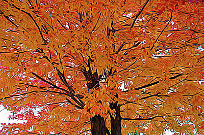 Photograph - Expressionalism Golden Tree by Aimee L Maher Photography and Art Visit ALMGallerydotcom