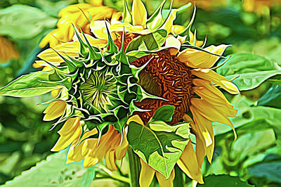 Photograph - Expressionalism Joyous Sunflower by Aimee L Maher Photography and Art Visit ALMGallerydotcom