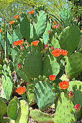 Photograph - Expressionalism Orange Blossom Cactus by Aimee L Maher Photography and Art Visit ALMGallerydotcom