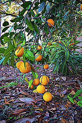 Photograph - Expressionalism Orange Tree by Aimee L Maher Photography and Art Visit ALMGallerydotcom