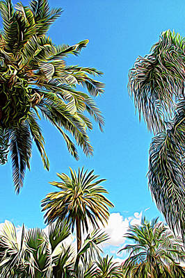 Photograph - Expressionalism Palms In The Sky by Aimee L Maher Photography and Art Visit ALMGallerydotcom