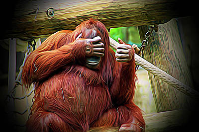 Photograph - Expressionalism Peek A Boo by Aimee L Maher Photography and Art Visit ALMGallerydotcom