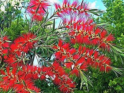 Photograph - Expressionalism Red Bottlebrush by Aimee L Maher Photography and Art Visit ALMGallerydotcom