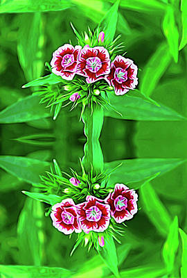 Photograph - Expressionalism Reflections Of A Summer Bouquet by Aimee L Maher ALM GALLERY