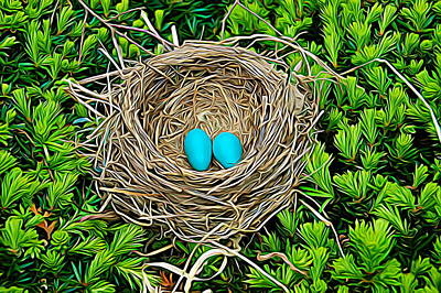 Photograph - Expressionalism Robins Nest by Aimee L Maher Photography and Art Visit ALMGallerydotcom