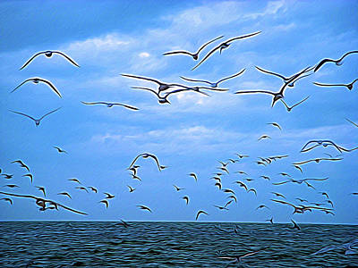 Photograph - Expressionalism Seagull Flight by Aimee L Maher ALM GALLERY