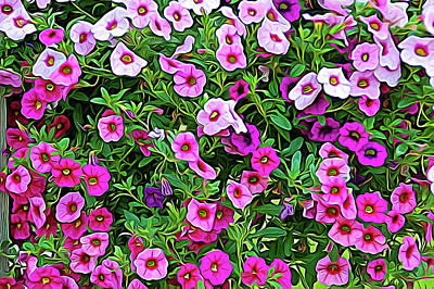 Photograph - Expressionalism Shades Of Pink by Aimee L Maher Photography and Art Visit ALMGallerydotcom