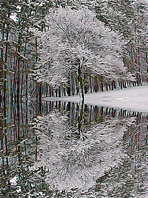 Photograph - Expressionalism Winter Reflection by Aimee L Maher Photography and Art Visit ALMGallerydotcom