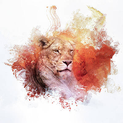 Photograph - Expressions Lioness by Jai Johnson
