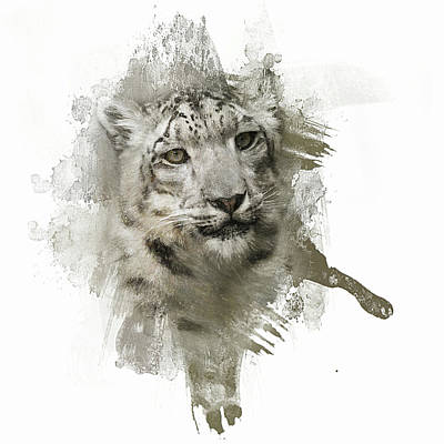 Photograph - Expressions Snow Leopard by Jai Johnson