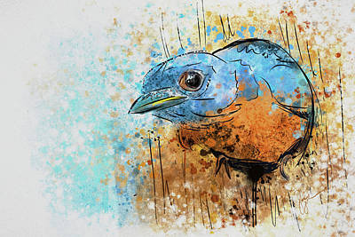 Wild Bird Digital Art - Expressive Bluebird 2 by Jai Johnson