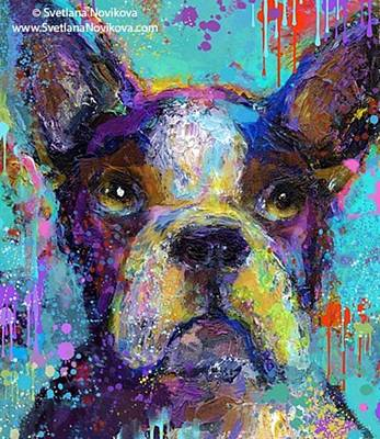 Animal Photograph - Expressive Boston Terrier Painting By by Svetlana Novikova