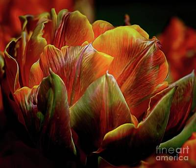 Photograph - Extraordinary Passion by Diana Mary Sharpton