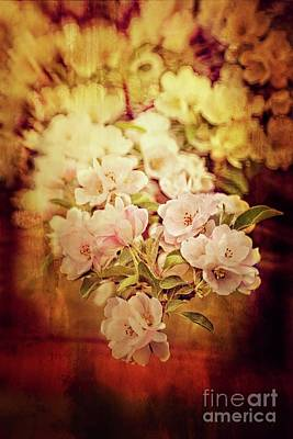 Photograph - Exuberant Spring by Mary Machare
