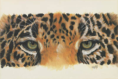 Feline Painting - Eye-catching Jaguar by Barbara Keith