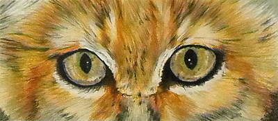 Painting - Eye-catching Sand Cat by Barbara Keith