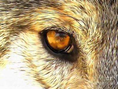 Eye Of A Wolf. Art Print