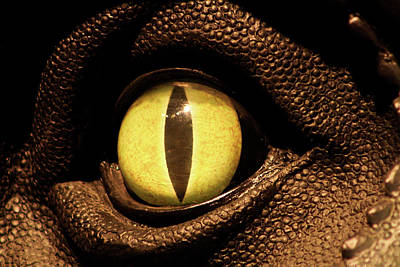 Soap Suds - Eye of the Dino by Selena Lorraine