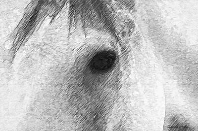 Digital Art - Eye Of The Horse by Barbara A Lane