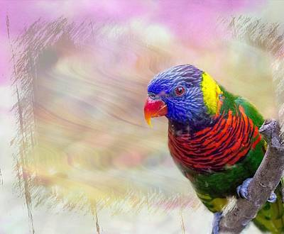 Painting - Eye Of The Parrot by Ches Black