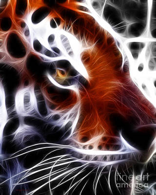 Eye Of The Tiger 2 Art Print by Wingsdomain Art and Photography