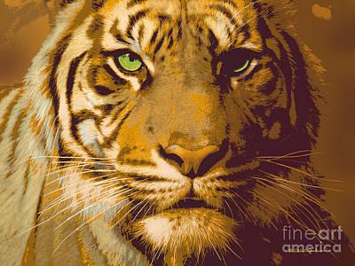 Eye Of The Tiger Animal Portrait  Art Print