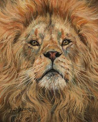 Painting - Eye To Eye, Lion. by David Stribbling