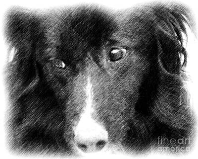 Soulful Eyes Drawing - Eyes Of Expression In Pencil by Smilin Eyes  Treasures