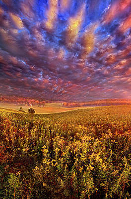 Photograph - Eyesight by Phil Koch