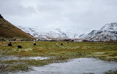 Photograph - Eyjafjallajokull Iceland by Deborah Smolinske