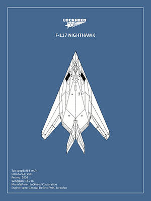 F-117 Nighthawk Art Print