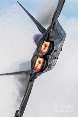 Garden Fruits - F-22 Raptor Burners by Airpower Art