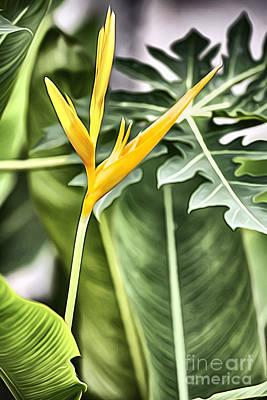 F Flowers Original