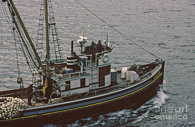 Photograph - F/v Purse Seiner Avalon Of Gig Harbor Sept. 1983 by California Views Archives Mr Pat Hathaway Archives