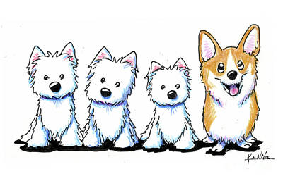 Drawing - Fab Four Cc by Kim Niles