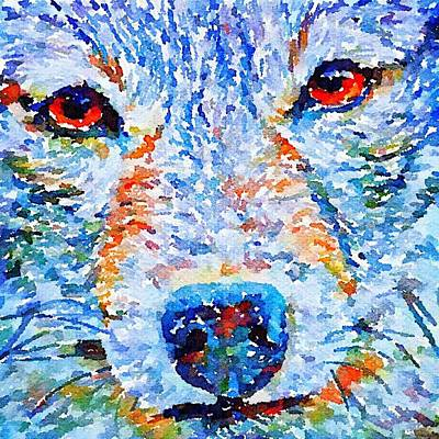 Digital Art - Face Of A Wolf by Julius Reque