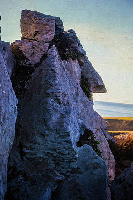 Photograph - Face Rock by Garry Gay