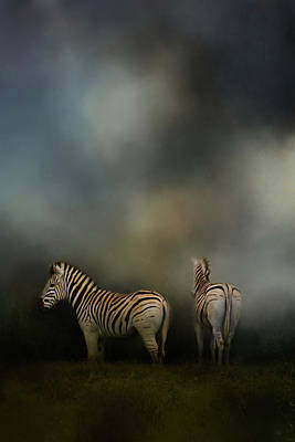 Photograph - Facing Adversity Zebra Art by Jai Johnson