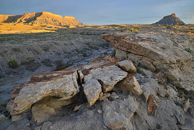 Photograph - Factory Butte And Company by Ray Mathis