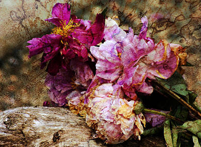 Photograph - Faded Driftwood And Old Roses by Barbara  White