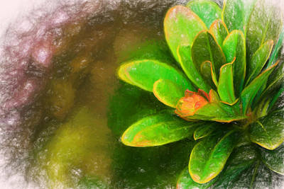 Digital Art - Faded Flora by Terry Cork