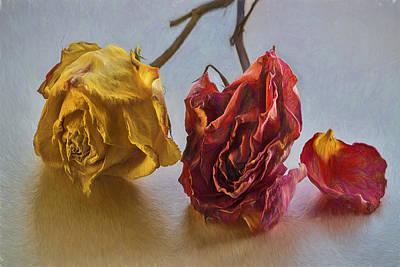 Photograph - Faded Flowers by Vladimir Kholostykh