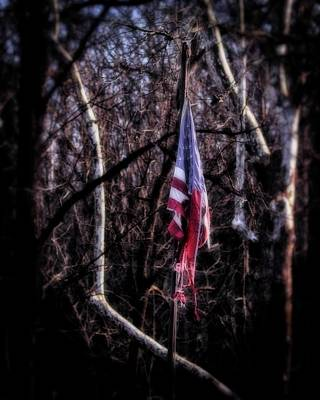 Photograph - Faded Glory by Alan Raasch