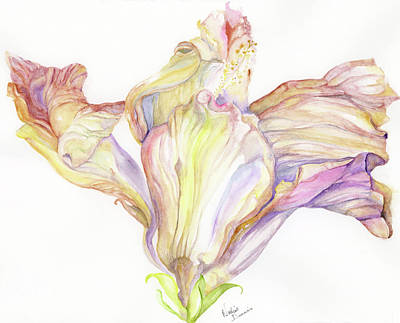 Painting - Faded Hibiscus by Nadine Dennis